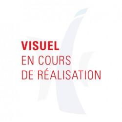 JEU DE 2 AILES AVANT adaptables pour Renault 4 L