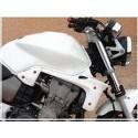 ECOPES pour Honda Hornet 900